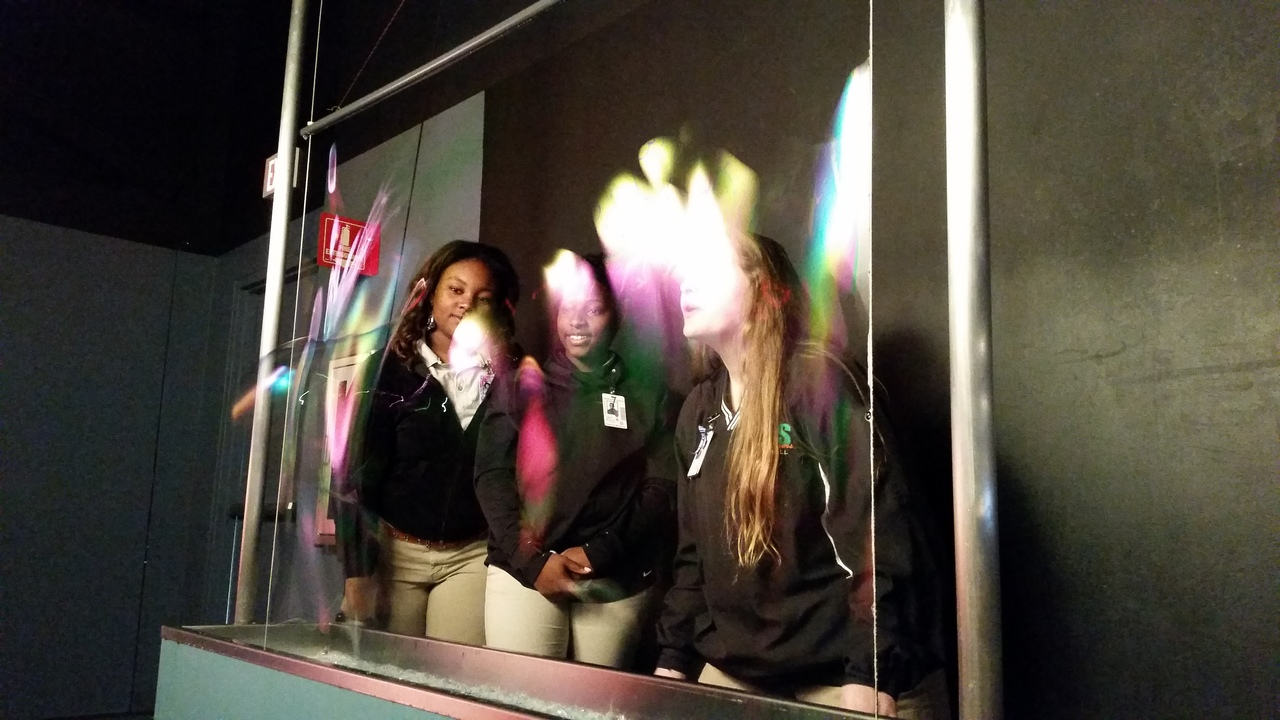 Bubble exhibit
