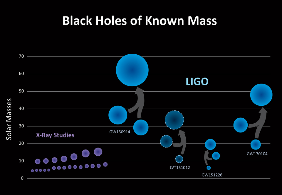 Black holes of known mass