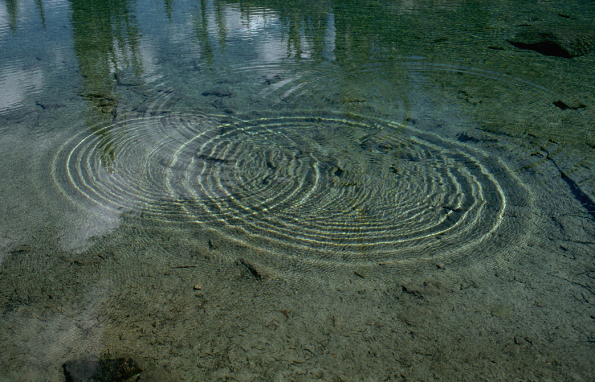 Interference patterns in water